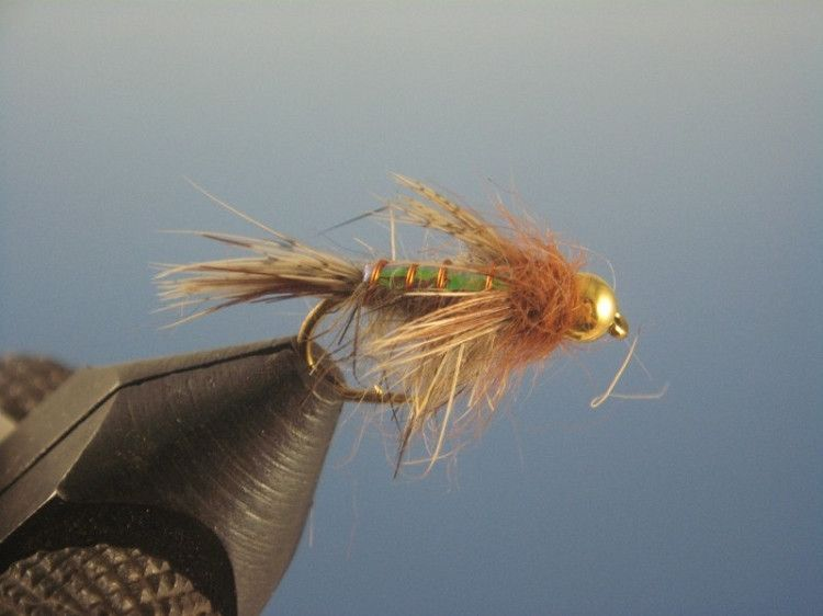 Beadhead Flashback Caddis Hares Ear Natural available in sizes 12 to 16