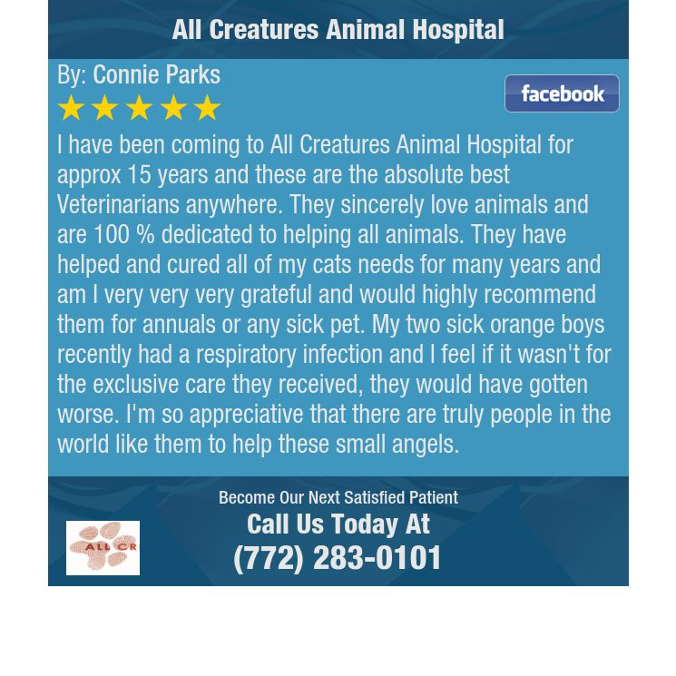 13++ West columbia animal clinic ideas in 2021