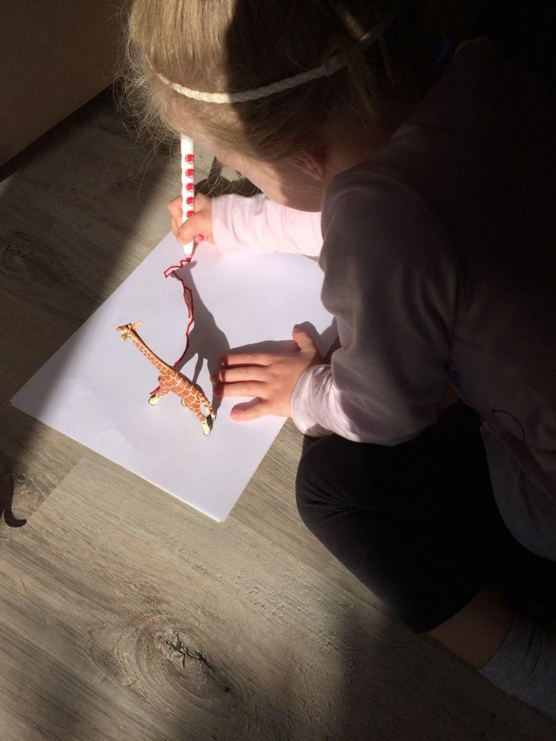 Jouer avec l'ombre des objets | Ombre et lumière, Activité ...