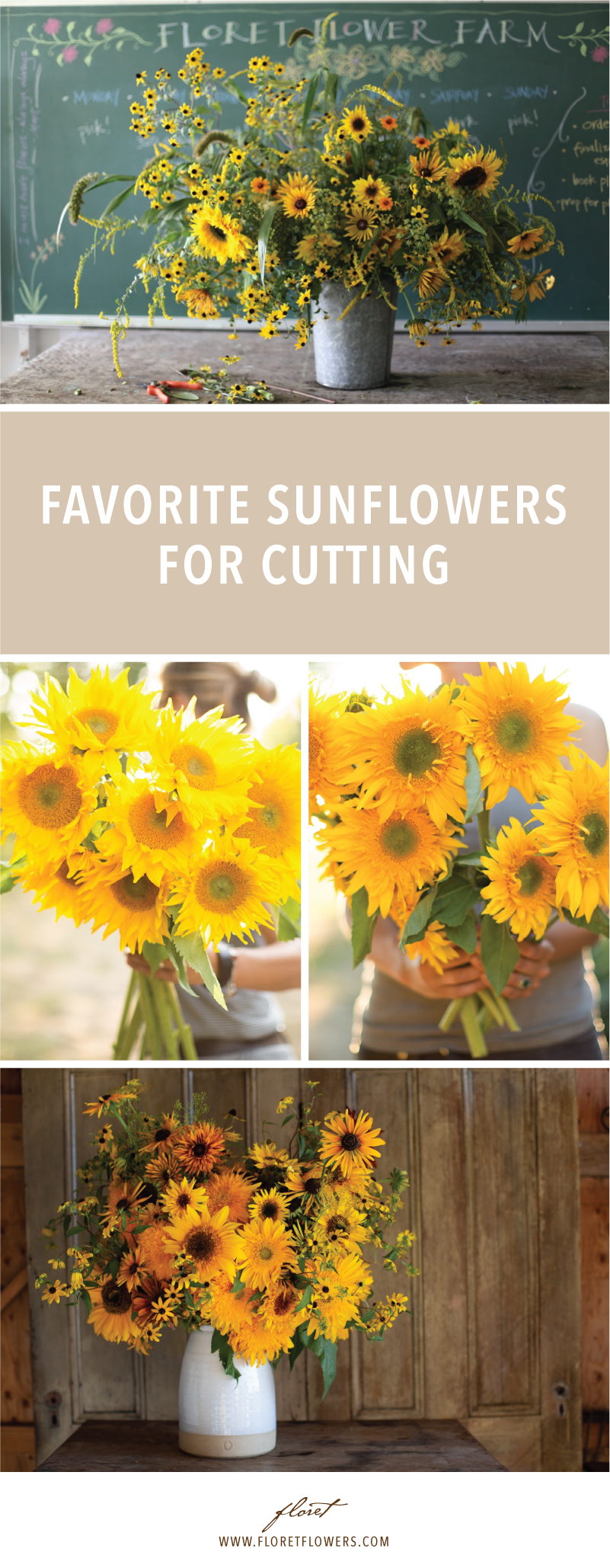 Pin On Cut Flower Garden Growing Resources