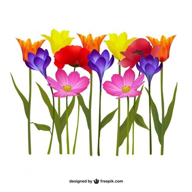 Fleurs colorées illustration