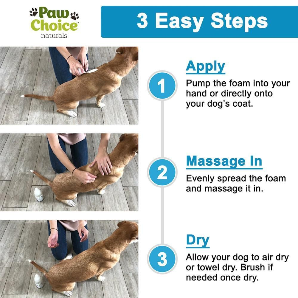 No Rinse Waterless Dry Dog Shampoo Dog Shampoo Dry Dog Shampoo