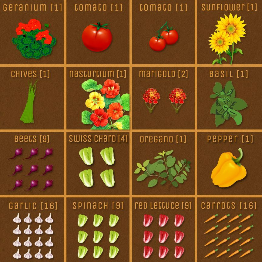 3d7dc2cdf36d53ae5d67a225fc223763 - Best Vegetables For Square Foot Gardening