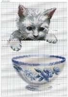 Gallery.ru / Фото #31 - DFEA HS 23 CATS. - fialka53