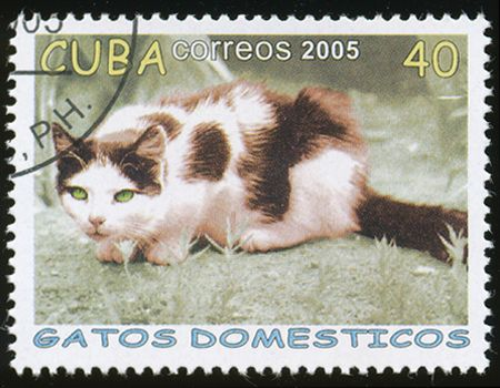 Cuba 2005 Cat Stamps - Domestic Cats