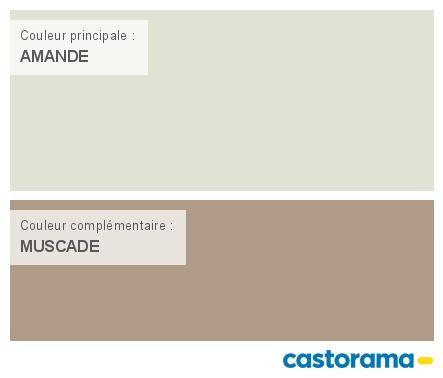 Castorama Nuancier Peinture Mon Harmonie Peinture Amande