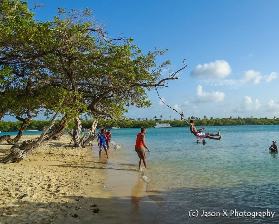 Pin on Beautiful Tobago Beaches