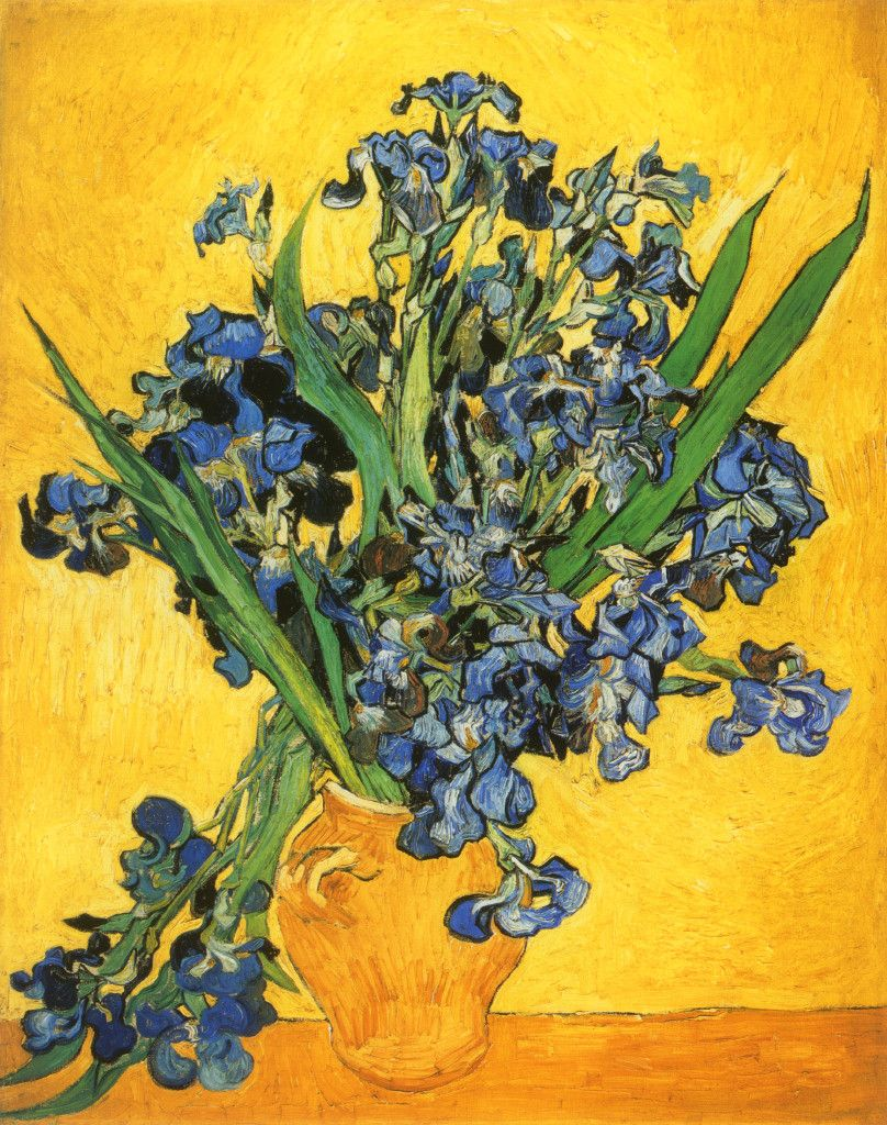 Vincent Van Gogh Irises Vase Flower Wall Picture Black Framed Art Print