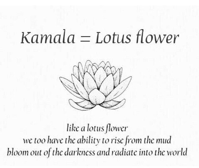 "Kamala2020 � on Instagram: ""KAMALA � The Lotus Flower shall always rise above the mud, bloom out of the darkness and radiate the world…"""