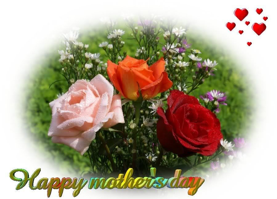 www.commentsdb.com wp-content uploads 2015 07 Rose-For-Mother%E2%80%99s-Day.jpg