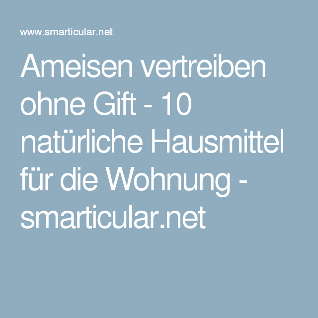 ameisen vertreiben ohne gift 10 nat rliche hausmittel f r die wohnung. Black Bedroom Furniture Sets. Home Design Ideas