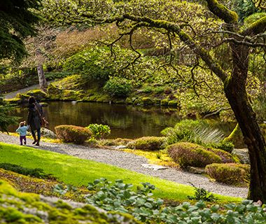 America 39 s most beautiful gardens seattle vacation and for Most beautiful garden trees