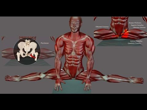 Learn what muscles are being stretched and contracted while