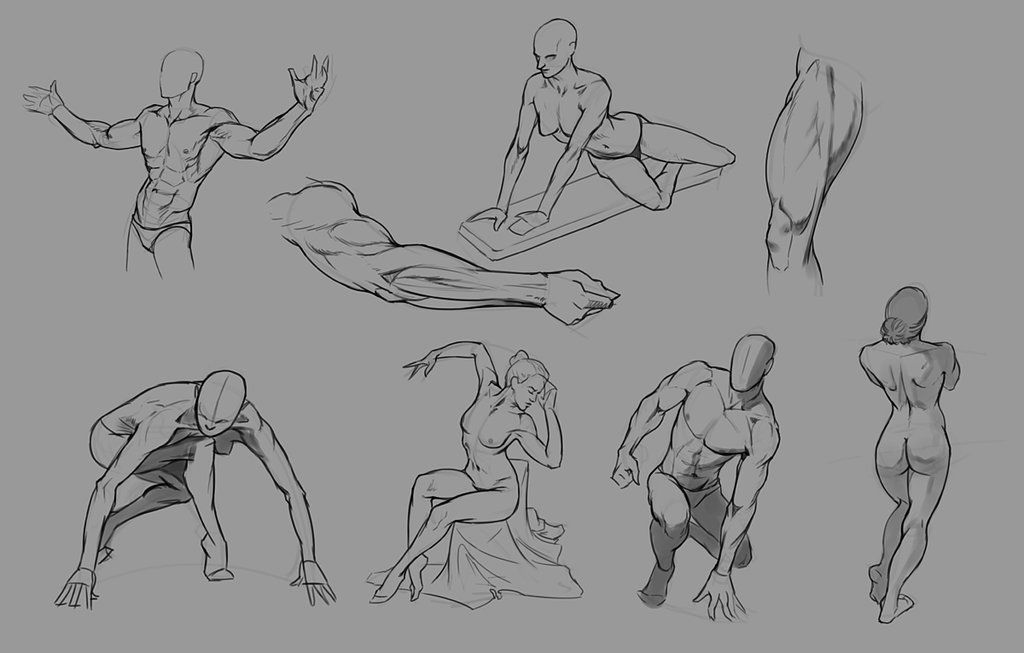 A collection of anatomy and pose references for artists. | art ...