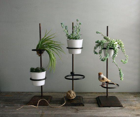 25 Unique Plant Holders Ideas On Pinterest Macrame