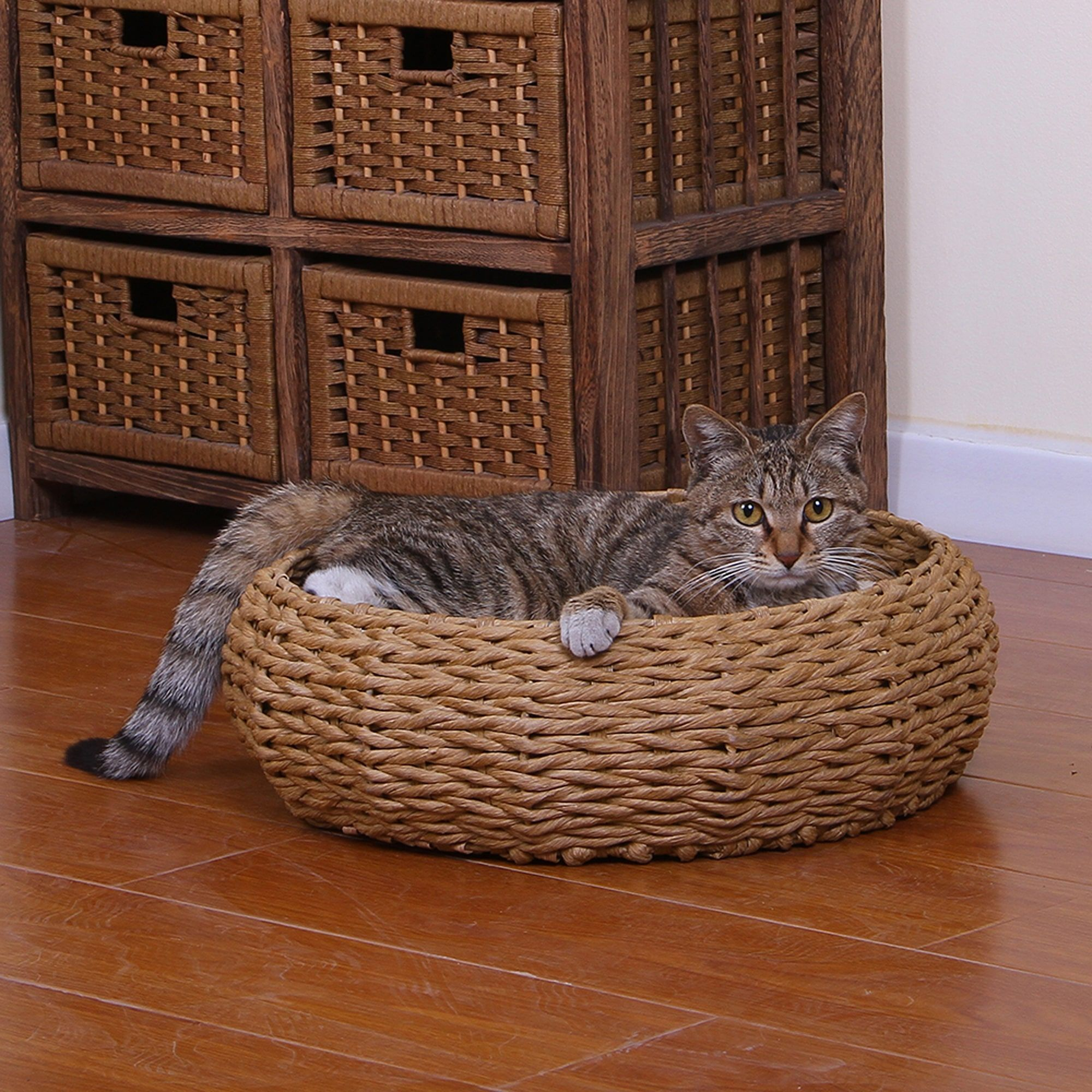 PetPals Paper Rope Cat Bed Cute bedding, Cat basket