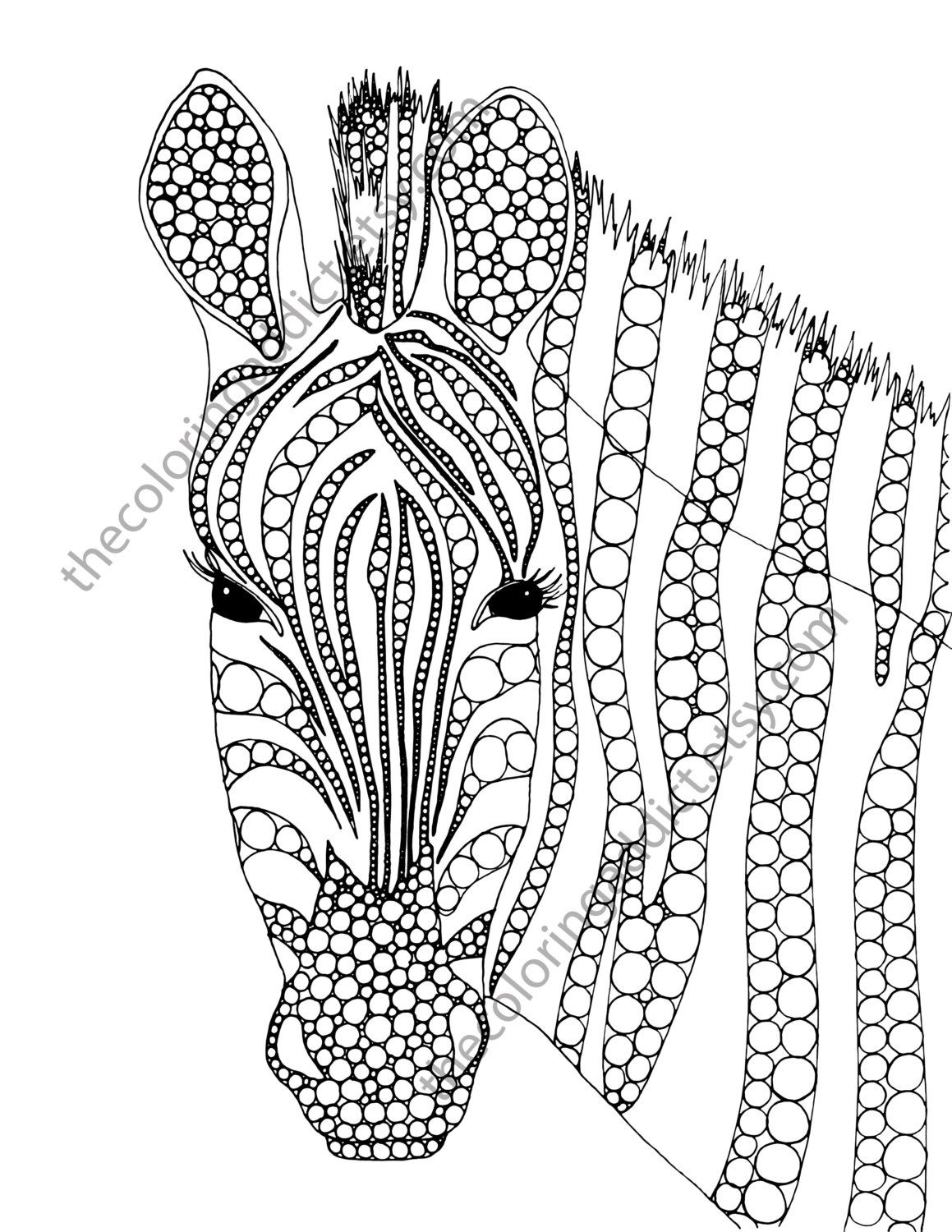 Zebra Coloring Page Animal Coloring Page Adult Coloring Page
