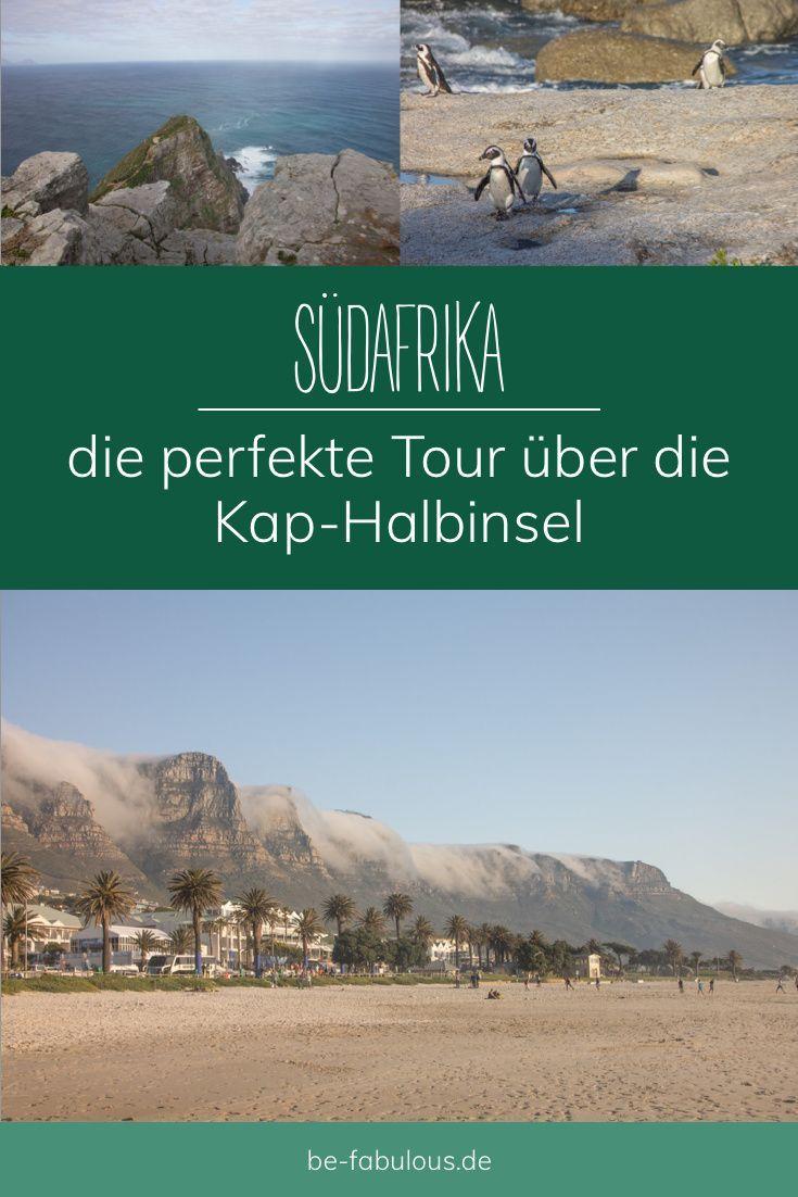 Wunderschöne Strände, tolle Aussichten und interessante Tiere, die Kap-Halbinsel hat unglaublich viel zu bieten! Und hier findest du die perfekte Tour - in Kapstadt startend. #südafrika #kapstadt #kaphalbinsel #reisetipps
