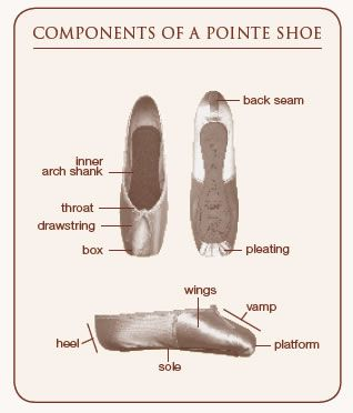 What is pointe?