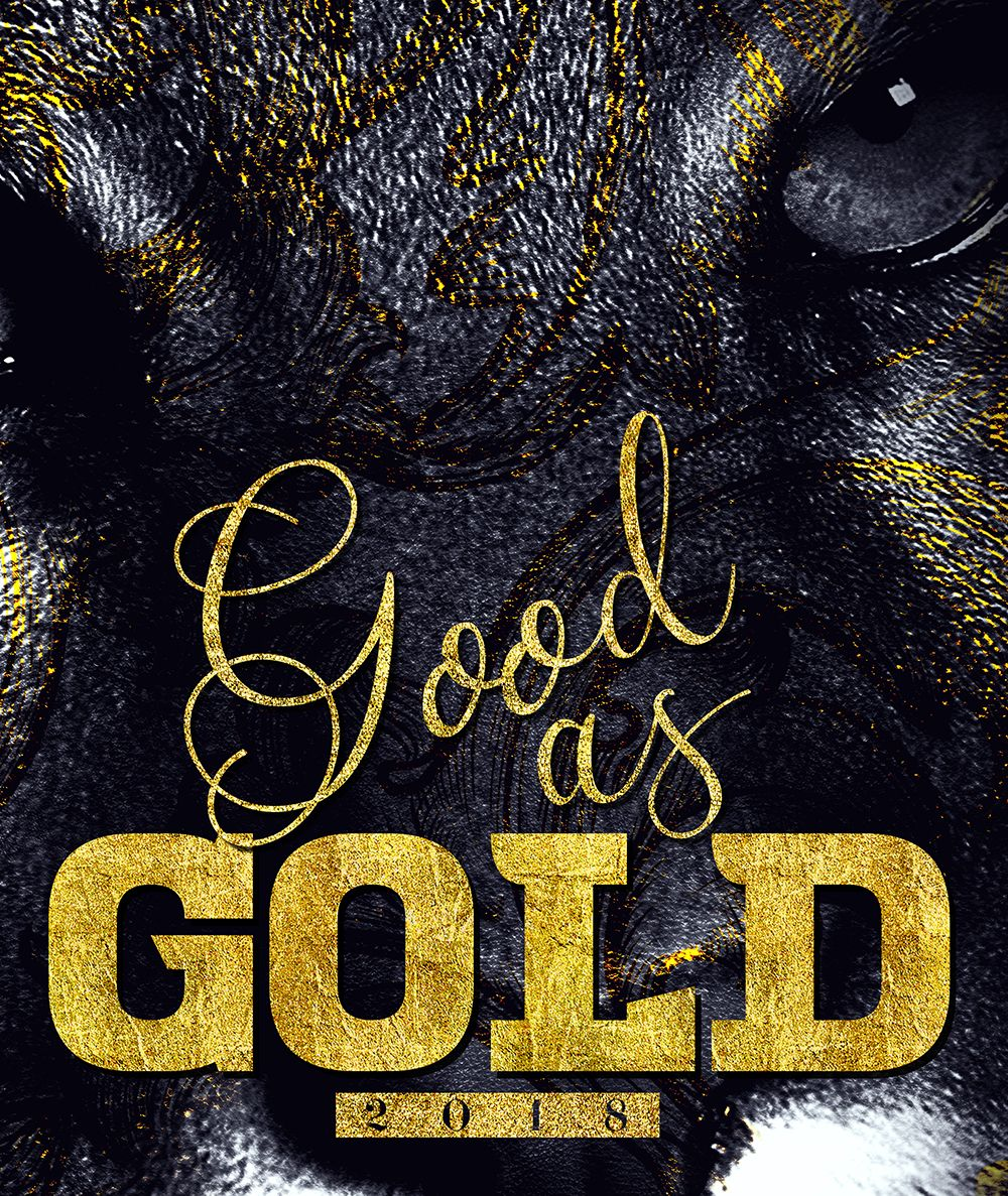 Yearbook Cover Photography : Cougar gold yearbook cover ideas
