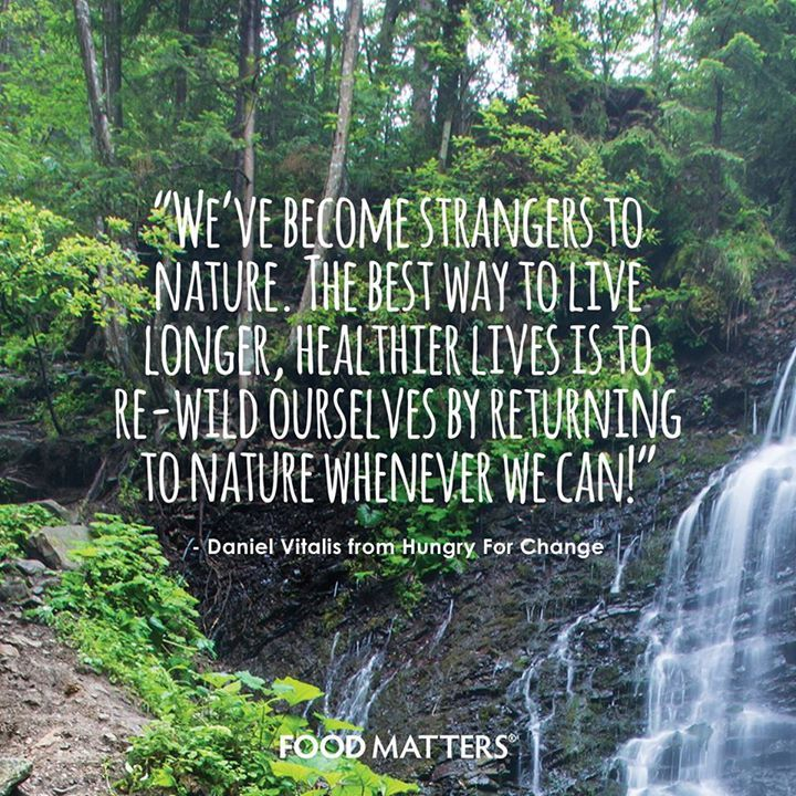 Life And Nature Quotes: It's Time To Get Back To Nature! Www.foodmatters.tv