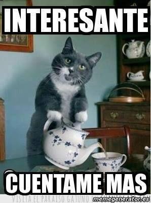 1544407 10205057492748245 2530503838486154794 N Jpg 298 400 Meme Gato Humor Divertido Sobre Animales Memes Divertidos