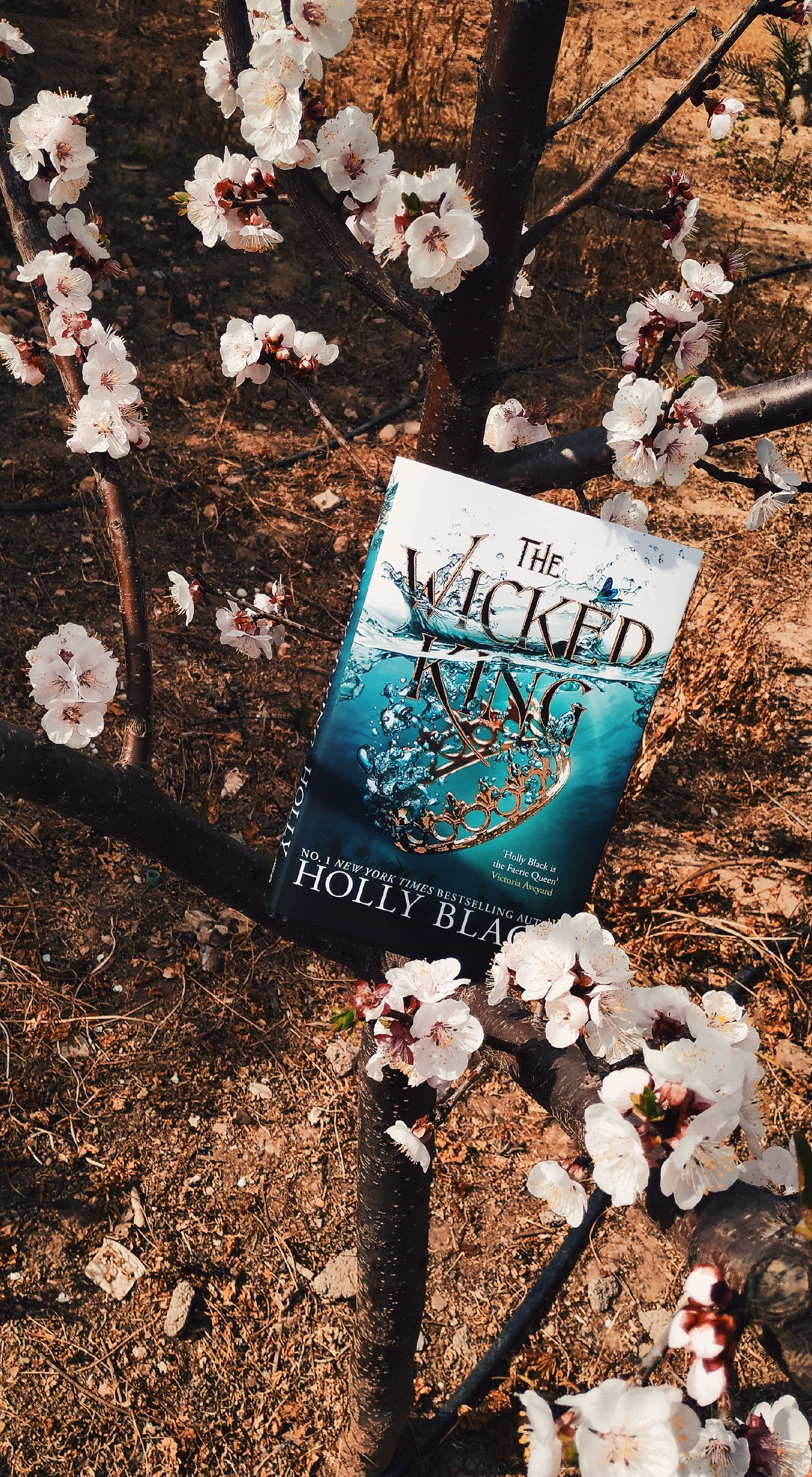 Wicked Libro The Wicked King I Loved This Book Book Books Libro