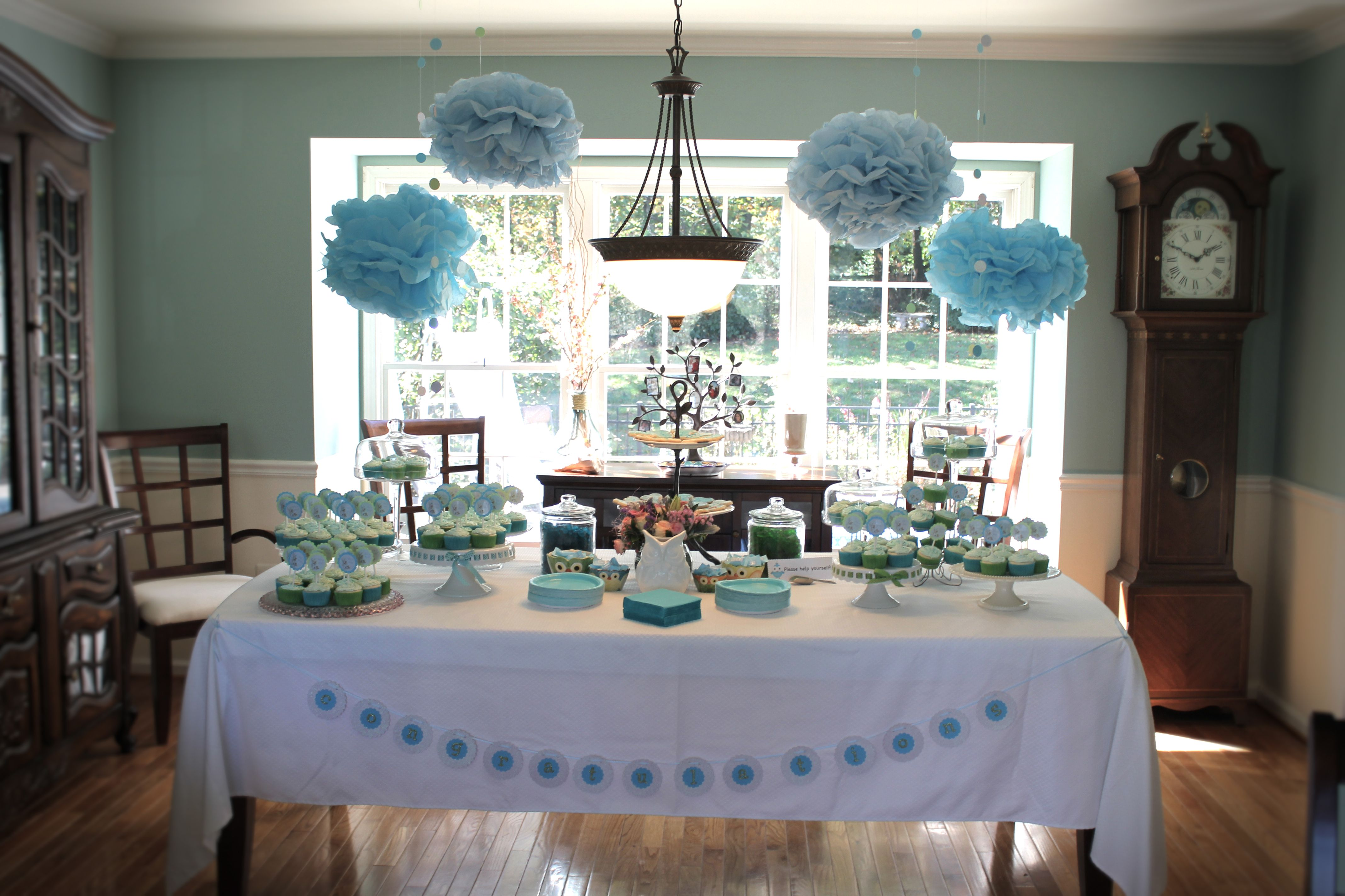 Owl Themed Baby Shower Ideas Photos And Homemade Decorations