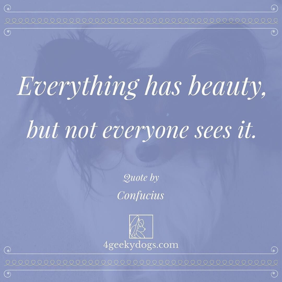 Everything Has Beauty Wednesdaywisdom Quotes Take The Time Today To Appreciate The Beauty That Is All Around Inspirational Quotes Quotes Wednesday Wisdom