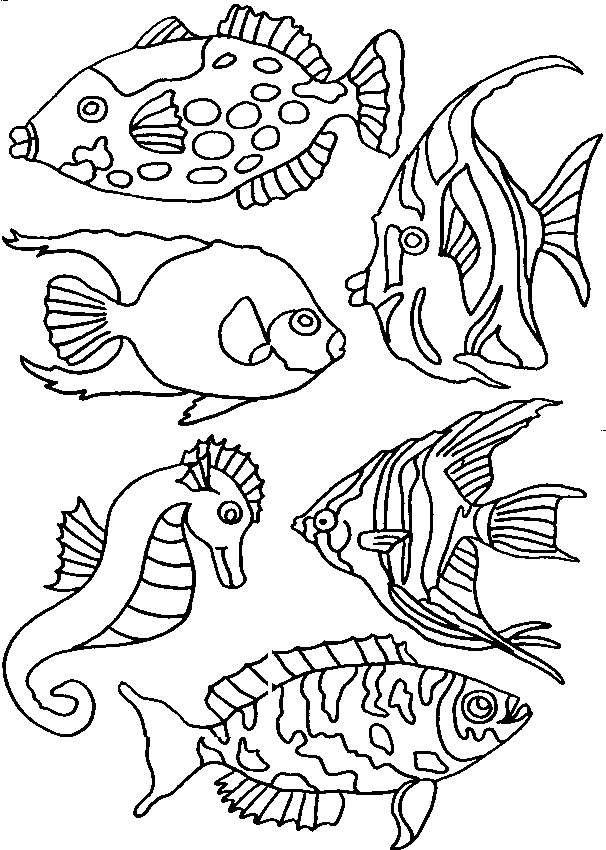 x9cd46otd 606×850  stuffed animal patterns water