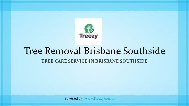 Emergency tree removal brisbane southside httpswww