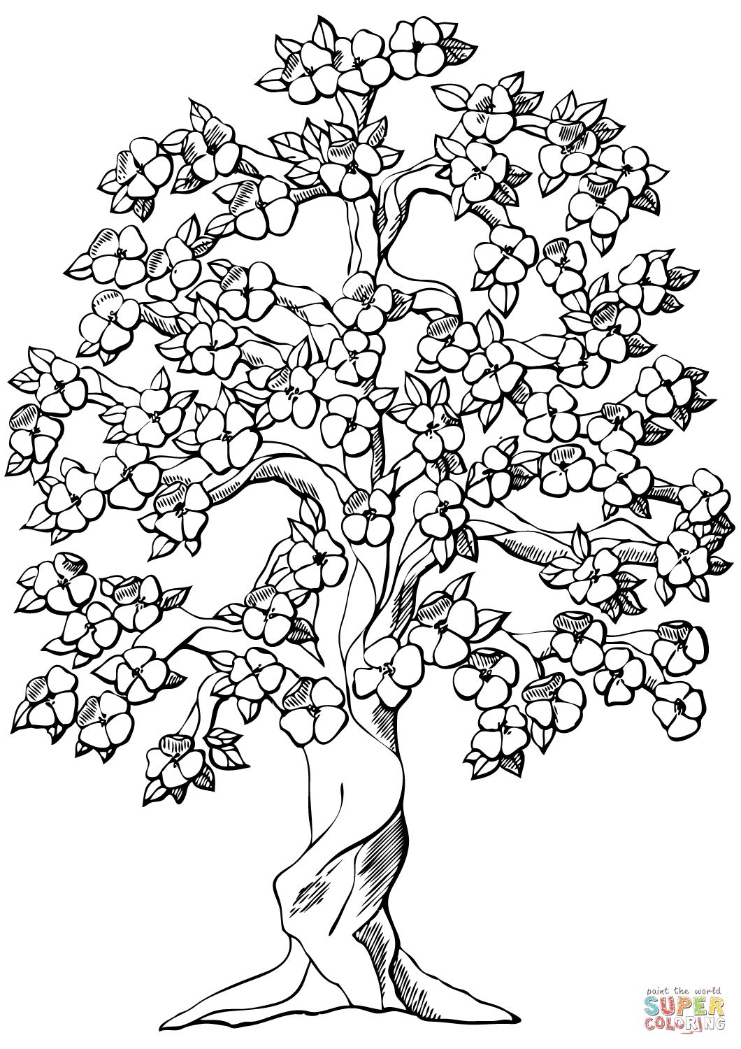 Weeping Cherry Blossom Tree Coloring Pages For Kids Collection Tree Coloring Page Flower Coloring Pages Coloring Pages