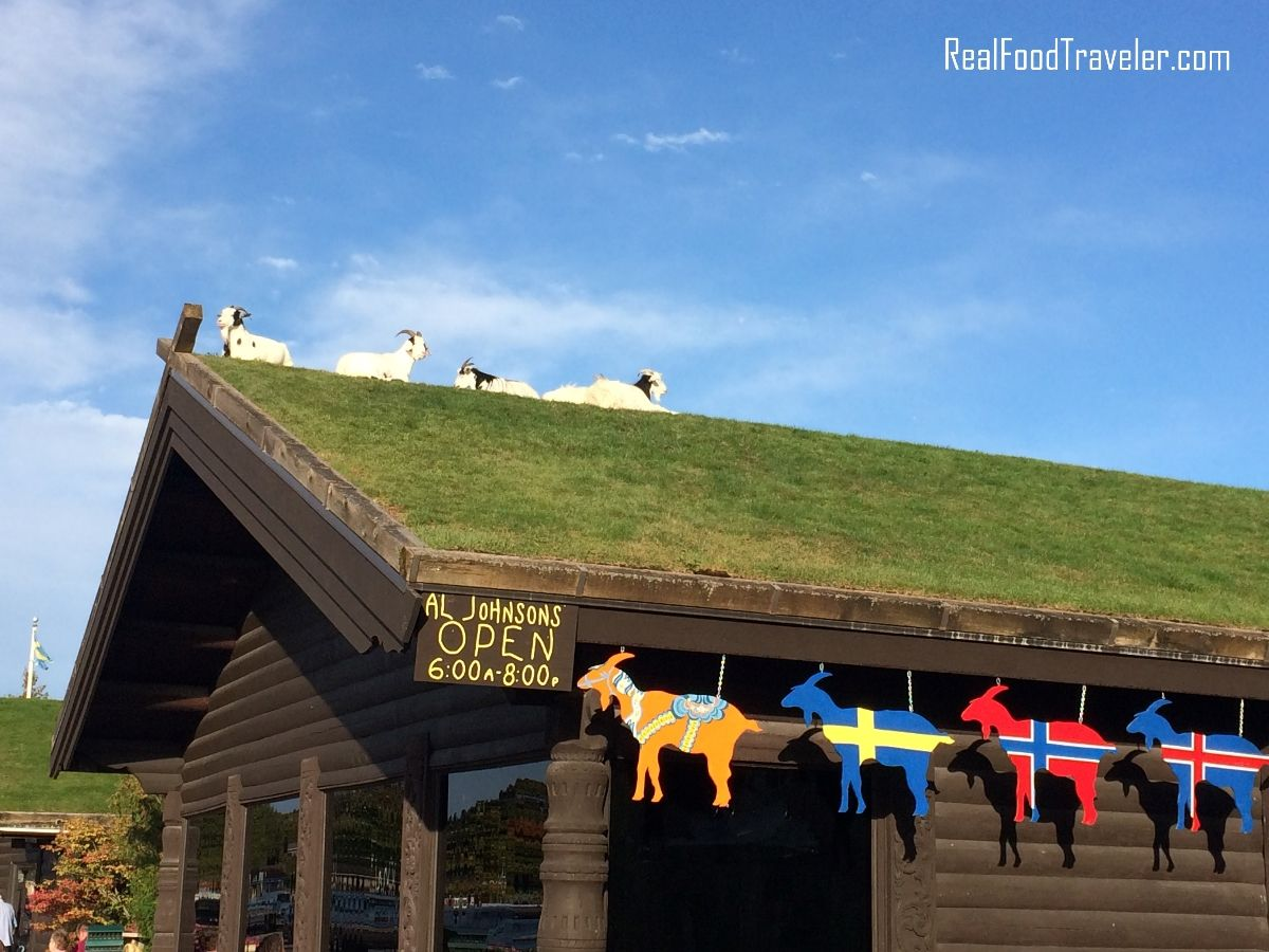 Goats on the roof of Al Johnson's Swedish Restaurant in