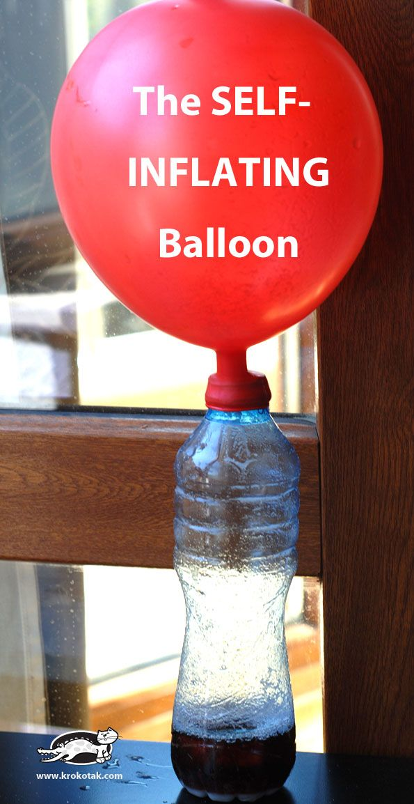 The SELF INFLATING Balloon Groundhog Baby Pinterest Kids