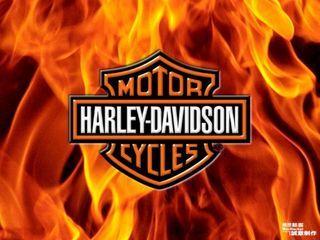 Harley Davidson Fire Sign Harley Davidson Wallpaper Harley Harley Davidson Quotes