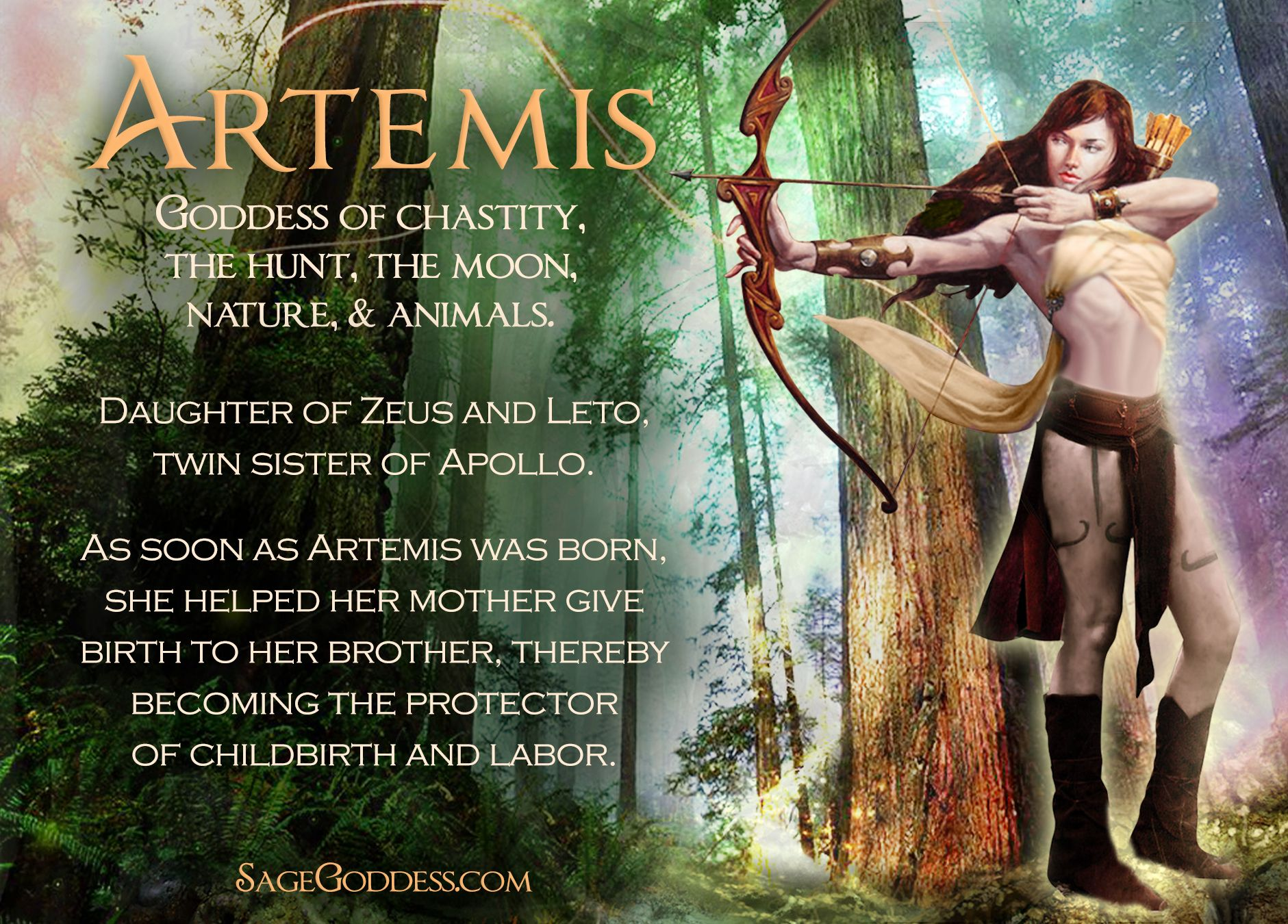 Artemis is the goddess of chastity the hunt the moon nature artemis is the goddess of chastity the hunt the moon nature and buycottarizona