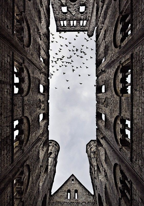 Another Viewpoint Art Photography Pinterest Worms Eye View