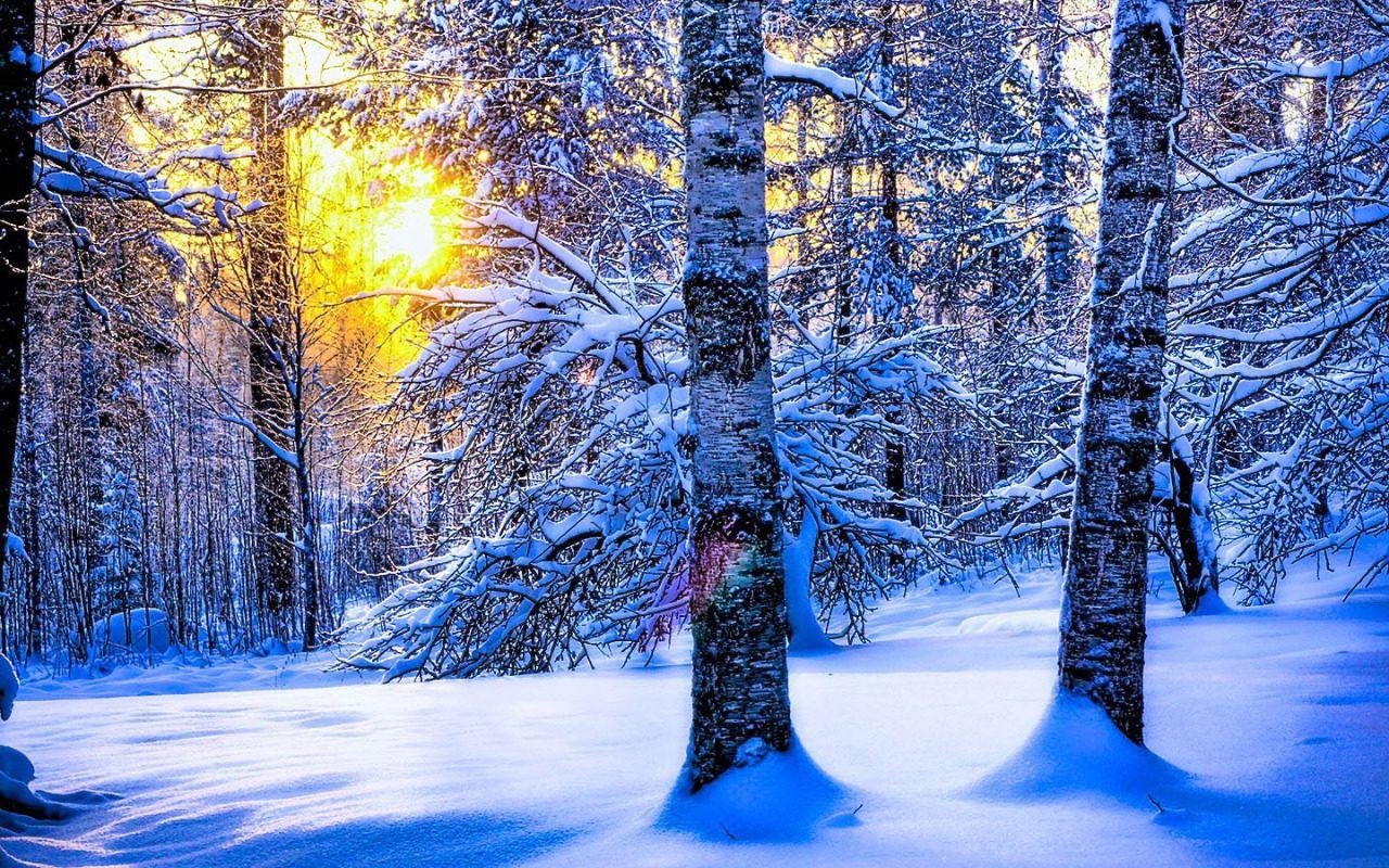 днём рождения, картинки с добрым утром зимний пейзаж агутин еще студенческие