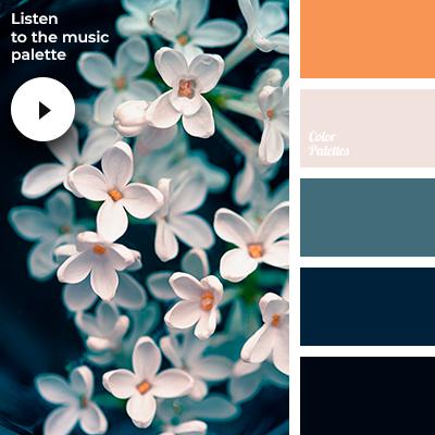 Ambient music palette #3901 (Color Palette Ideas) images