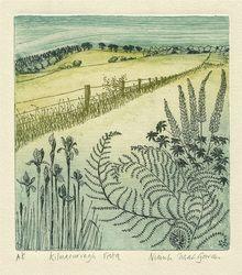 Kilmacurragh Vista by Niamh Mac Gowan - A Natural Selection