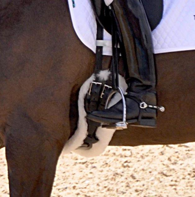 Viele Pferde haben keinen Sattel- sondern Gurtzwang. Das wird oft nicht erkannt, weil man das Ohrenanlegen, Schnappen, Wegtreten oder andere Missfallens- und Abwehrmaßnahmen entweder ignoriert oder nicht richtig zuordnet.  Wer sich sicher ist, dass der Sattel wirklich passt und wessen Pferd dennoch Probleme macht – speziell wenn gegurtet wird – der sollte überlegen, ob er beim Gurten alles r ...
