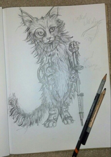 Paintings · steampunk kitty original pencil sketch kit sunderland main coon kitty cat crazy