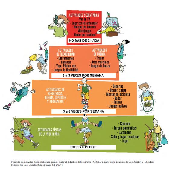 Por Qué Es Importante Que Los Niños Realicen Ejercicio Físico Ejercicios De Educacion Fisica Vida Saludable Para Niños Actividades Físicas
