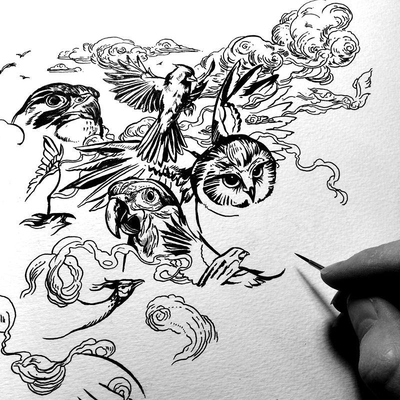 Jacqui Oakley Illustration