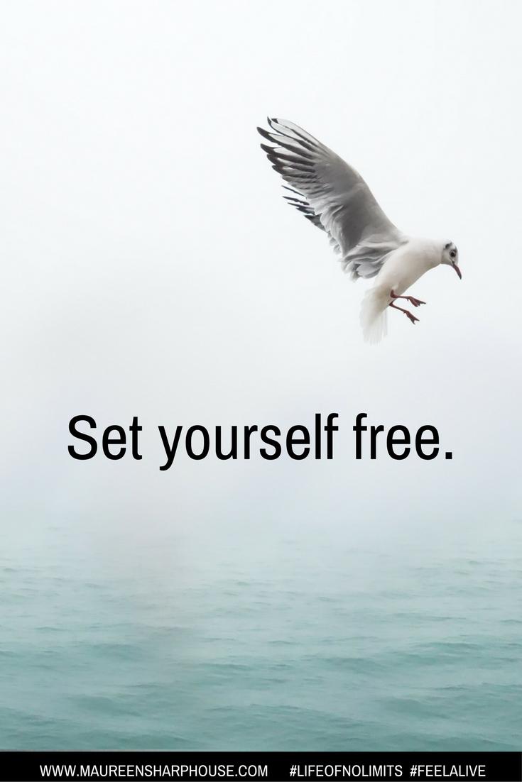 Free live xx