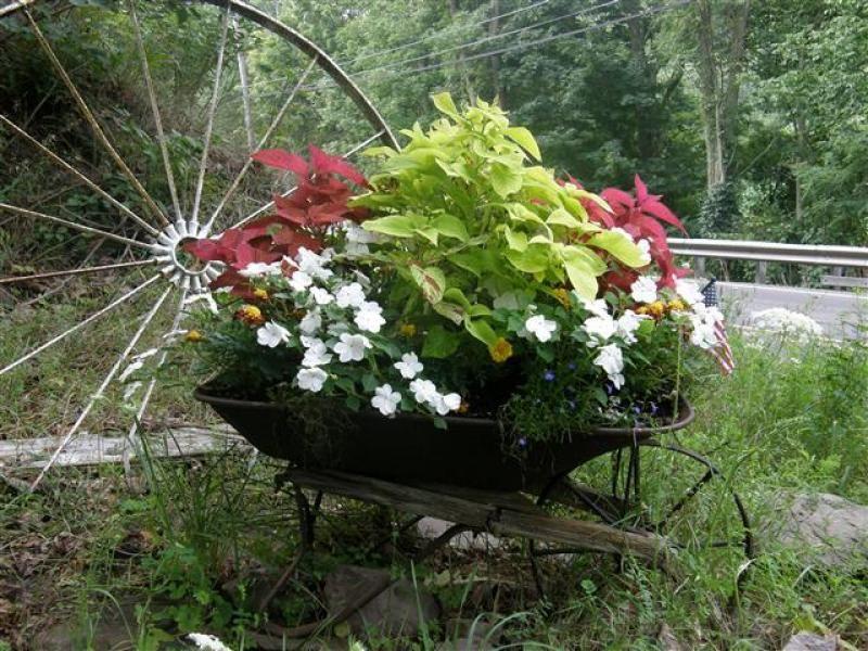 33 Wheelbarrow Planter Ideas For Your Garden Container Garden