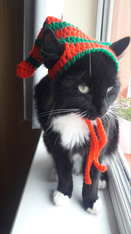 Elf Cat Hat Elf Hat For Cats Cat Elf Hat Christmas Cat Hat Katzen Hut Kittens Elf Hat Elf Small Dog Hat Christmas Costume Cat Hat Dog Hat Cat Christmas Costumes Christmas Cats Pet Costumes