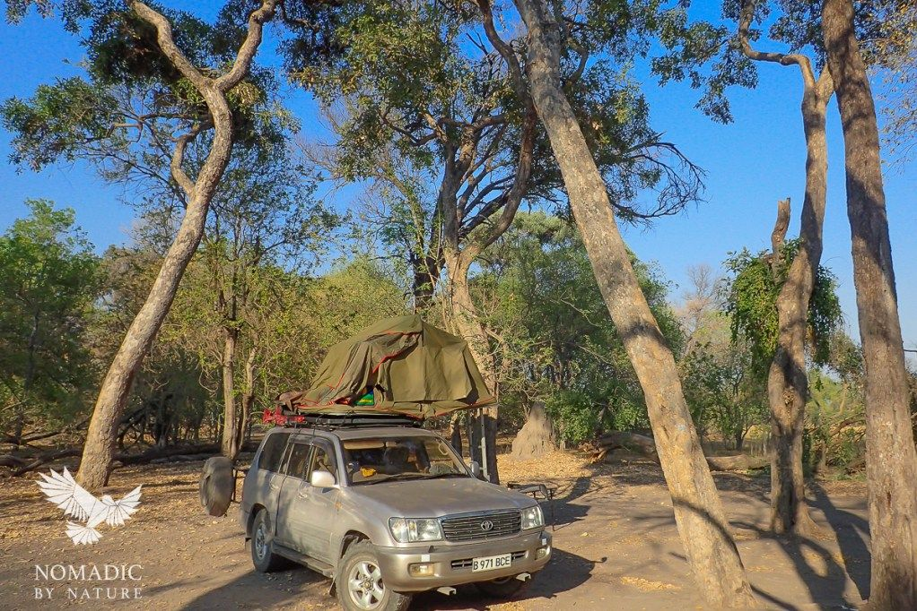 Our Wild Campsite in Khwai, Moremi Game Reserve, Botswana