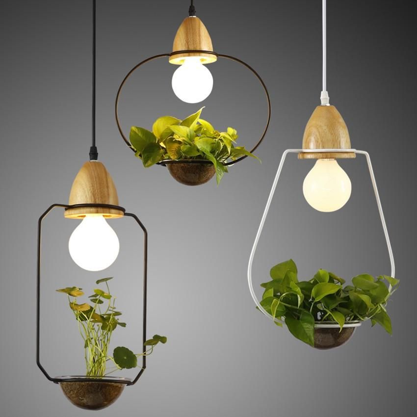 Sedum Hanging Lights Pinterest Small Plants Modern Farmhouse - Hanging lights for sale