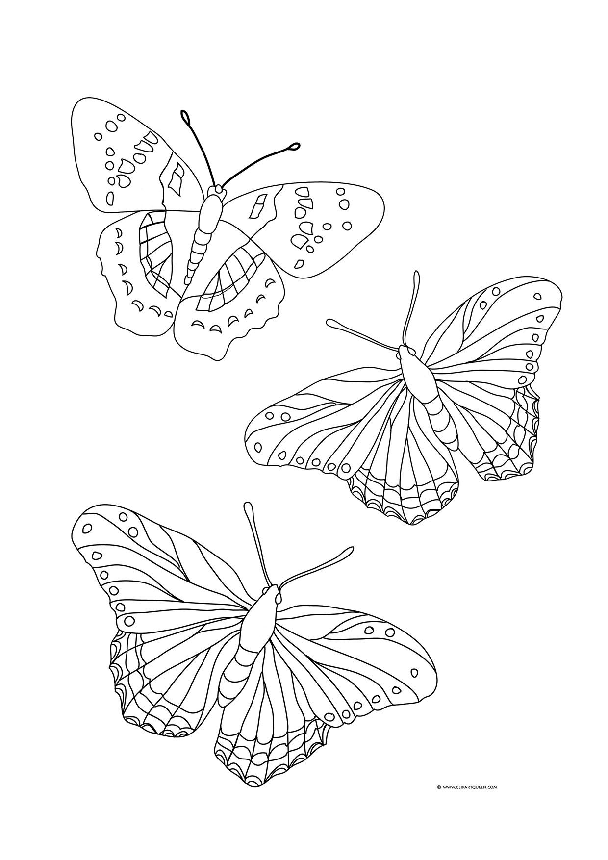 25 Amazing Photo Of Butterflies Coloring Pages Davemelillo Com Butterfly Coloring Page Free Coloring Pages Shape Coloring Pages [ 1754 x 1240 Pixel ]